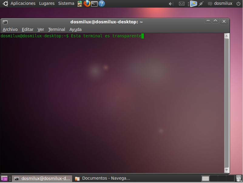 ¿Cómo optimizar Ubuntu 10.04?- Mejorar Ubuntu 10.04 - Pon a punto Ubuntu 10.04 (2/3)